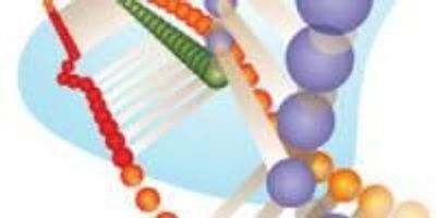 Lab Offers New Strategies, Tools for Genome Editing