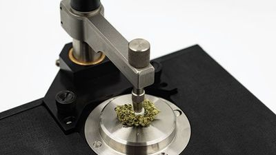 Overcoming Challenges of Cannabis Sample Prep