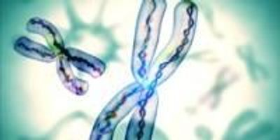 We're All Going to Die; DNA Strands on the End of Our Chromosomes Hint When