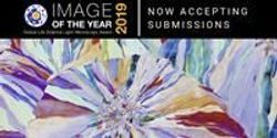 The Art of Science: Olympus Launches the First Global Image of the Year Award