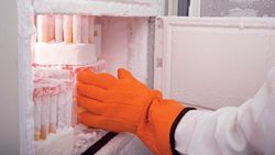 How to Ensure Proper Maintenance of Refrigerators and Freezers