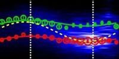 Does One Size Fit All? a New Model for Organic Semiconductors
