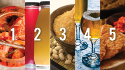 The Science of Fermentation