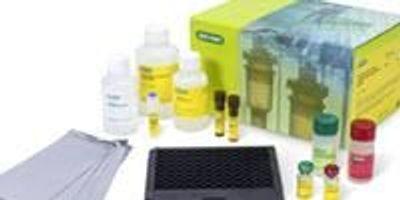 Bio-Rad Launches Bio-Plex Pro Human Immunotherapy Panel 20-plex Multiplex Assay