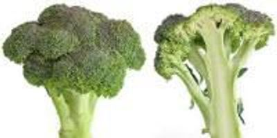 Maximizing Broccoli's Cancer-Fighting Potential