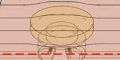Cyborg-Like Microchip Valve Driven by Earthworm Muscle