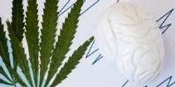 Cannabis Dosage Studied to Reduce Seizures in Children with Severe Epilepsy
