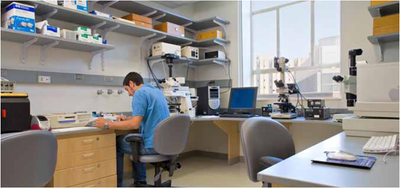 How Smart Lab Design and Layout Ensure Optimal Procedures, Workflow, Cooperation, and Productivity