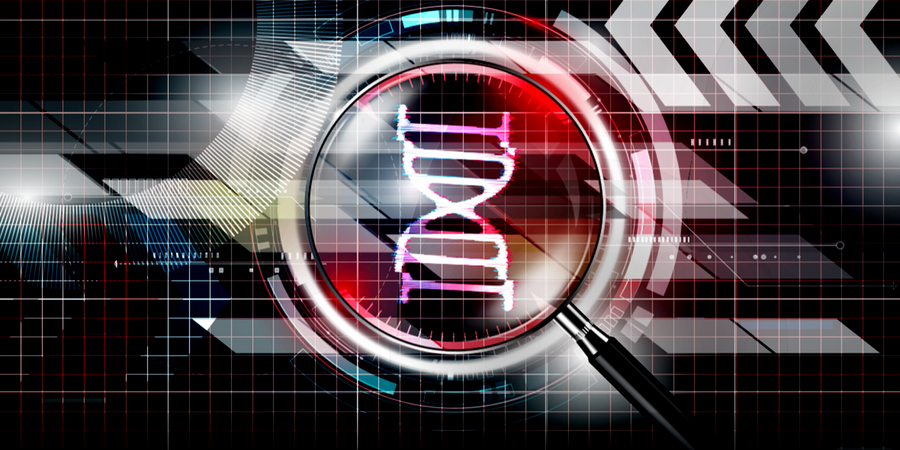 Next Level Forensic Investigations