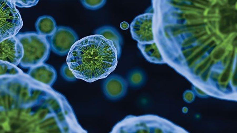 How Water Contaminants Impact Lab Analyses