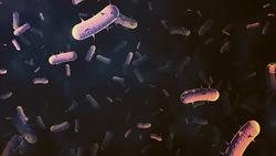 How to Safely Use Hazardous Sterilizing Agents