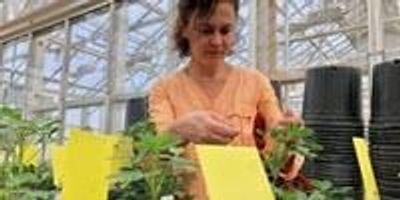 Cracking the Peanut Genome
