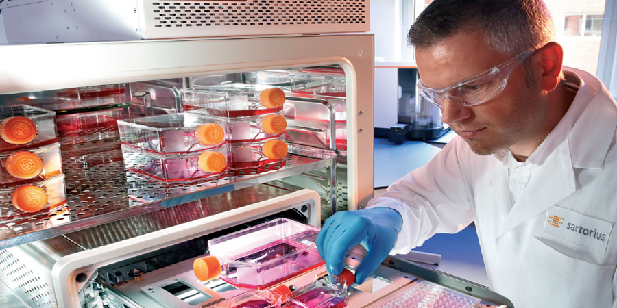 Developing Monoclonal Antibodies