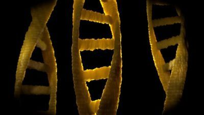 Genomic Testing Associated with Lower Health Care Costs in High-Risk Breast Cancer Patients