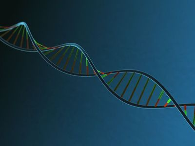 Study Questions Value of Genetic Risk Scores