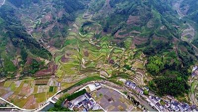 Study Finds Chinese Plant Biodiversity at Risk Due to Human Activity