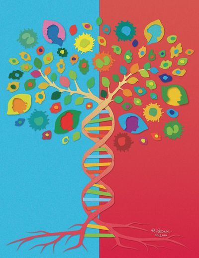Multimodal Genomic Analyses Predict Response to Immunotherapy in Lung Cancer Patients