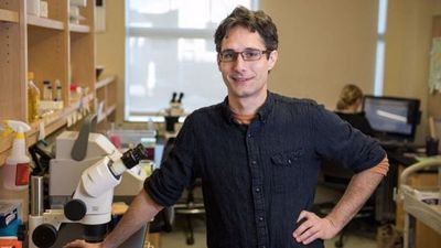 Biological Scientists Identify Pathways That Extend Lifespan by 500%