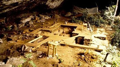 First Ancient DNA from West Africa Illuminates the Deep Human Past