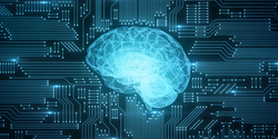 A New Method of Artificial Intelligence Inspired by the Functioning of the Human Brain