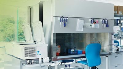 The Right Fume Hood for Your Lab