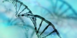 Trends in Genetics: A Tale of Two Decades