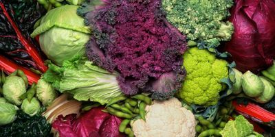 Natural Compound in Vegetables Helps Fight Fatty Liver Disease
