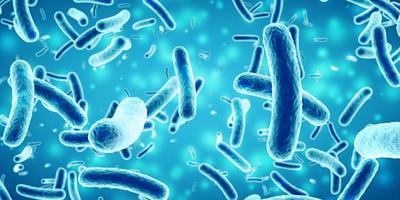 Microcensus in Bacteria