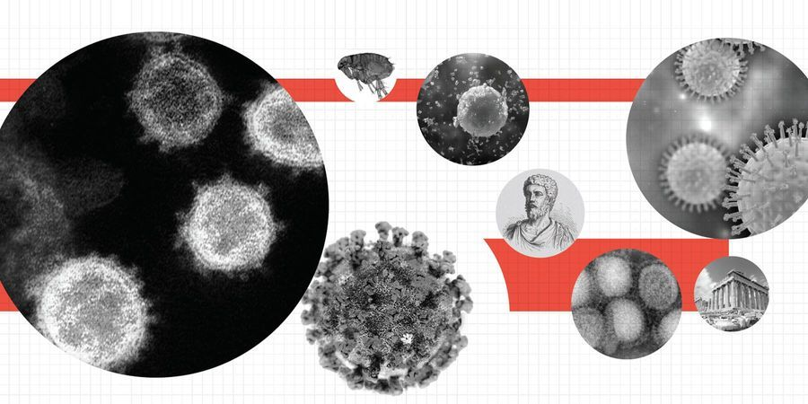 Pandemics Throughout History