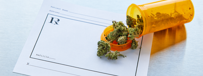 Whether Marijuana Helps with Pain Is Unclear, Study Suggests
