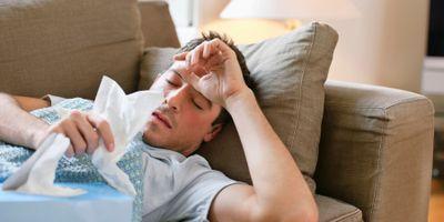 Common Coronaviruses Are Highly Seasonal, Study Says