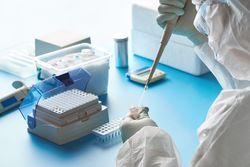 SARS-CoV-2: A Roadmap for Testing