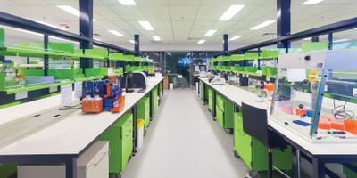 How to Choose Laboratory Casework Materials