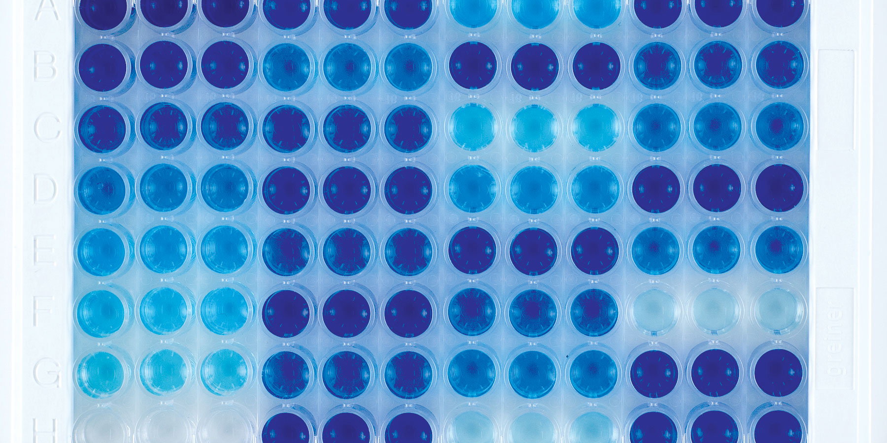 Improving ELISA Workflows with INTEGRA's Pipetting Solutions