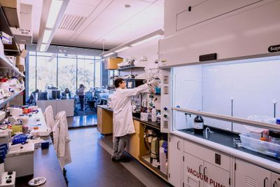 Energy Modeling Strategies to Optimize Sustainability in Research Laboratory Design