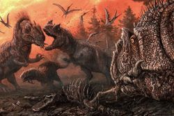 New Study Finds Cannibalism in Dinosaurs