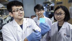 Novel Material Could Mean Damage-Proof, Flexible Screens