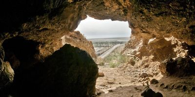 Piecing Together the Dead Sea Scrolls with DNA Evidence