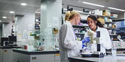 Preliminary Criterion Scores Do Not Help Counteract Racial Gap in NIH Grant Awards