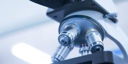 New Discovery Advances Optical Microscopy
