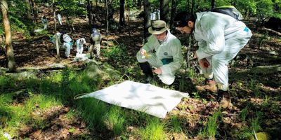 Study: Tick Surveillance and Control Lagging in US