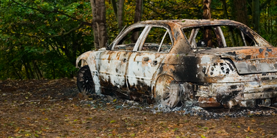 Forensics: Bringing Burnt Bones Back to Life Using 3D Technology