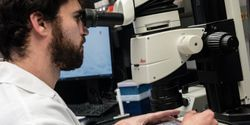 Compounds Halt SARS-CoV-2 Replication by Targeting Key Viral Enzyme
