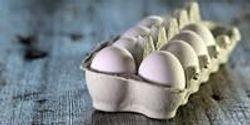 Bad News for Egg Lovers