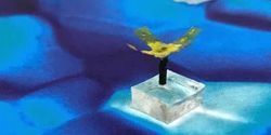 Wireless Aquatic Robot Could Clean Water and Transport Cells