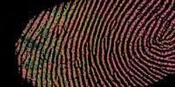Cutting-Edge Fingerprint Technology Could Help in the Fight Against Knife Crime