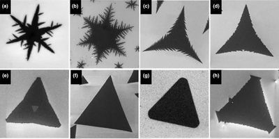 Mapping Crystal Shapes Could Fast-Track 2D Materials