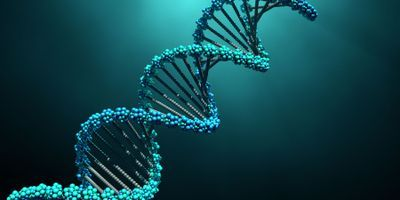 Solving a DNA Mystery