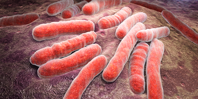 Compounds Show Promise in Search for Tuberculosis Antibiotics
