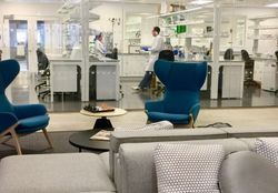"""Start-Up Lab """"Must-Haves"""""""